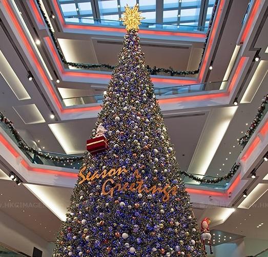 festival walk christma tree