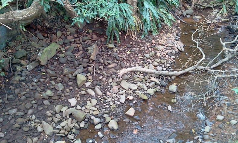 2017-11-27 Creek near Sacred Tree 2