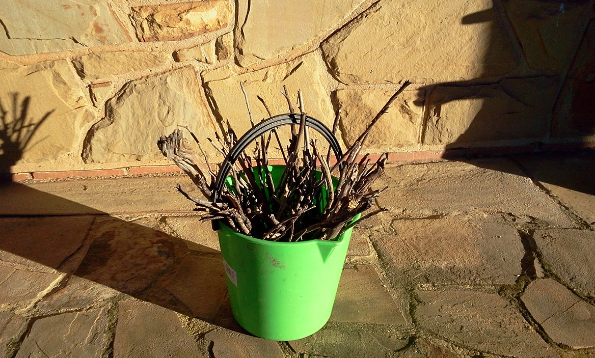 2019-06-24 Green Bucket of Sticks TWO