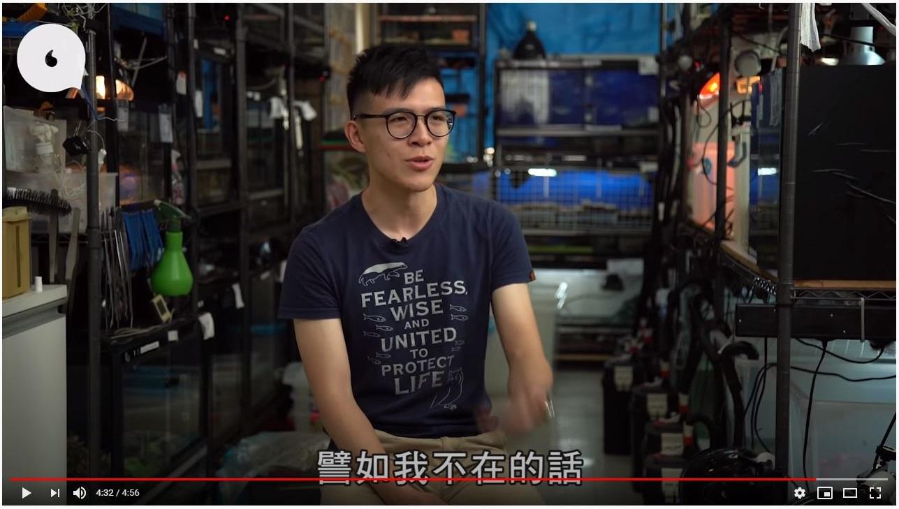 Henry Chan 4